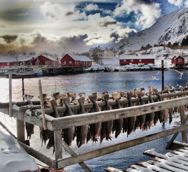 Hattvika Lodge, Winter 2014