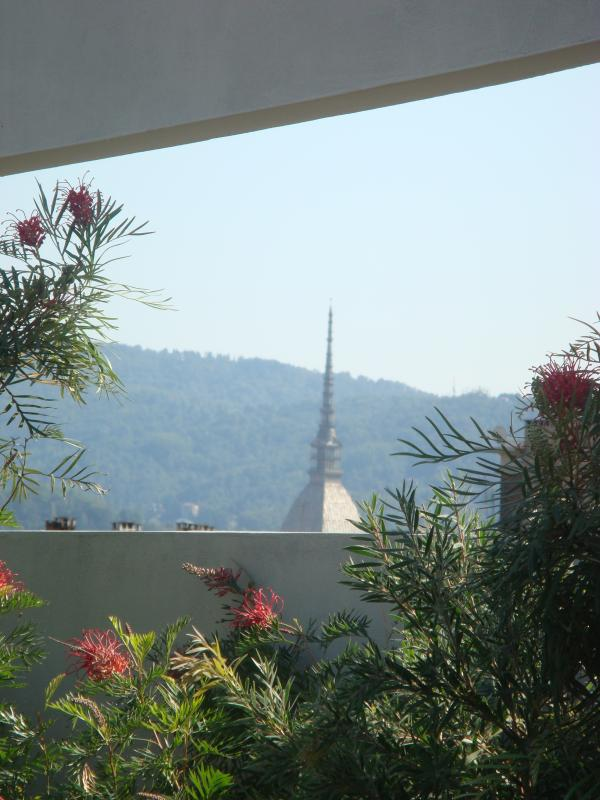 View from the terrace  to Mole Antonelliana and the Hill