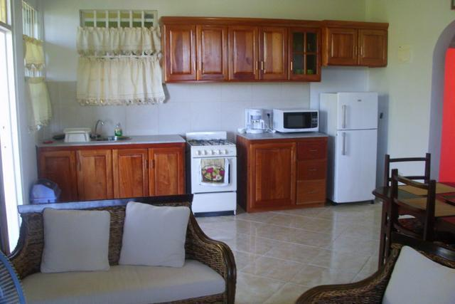 Modern furniture and appliances (Living, Kitchen & Dining)