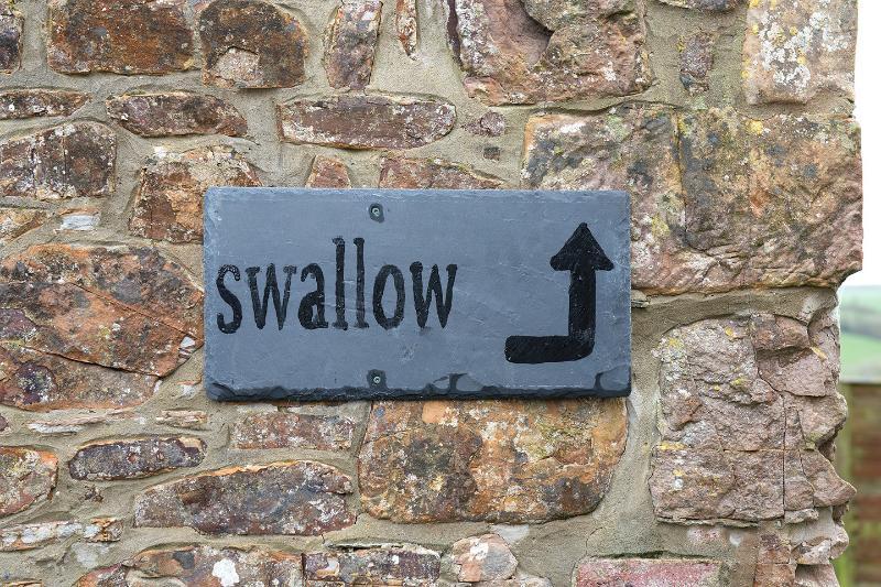 Swallow's front door opens onto the garden