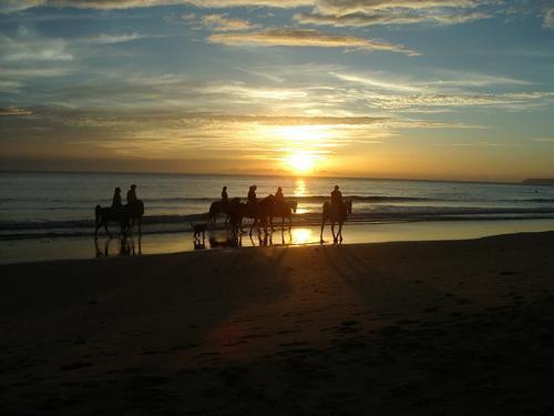 Entre otras actividades se pueden hacer rutas a caballo en la playa