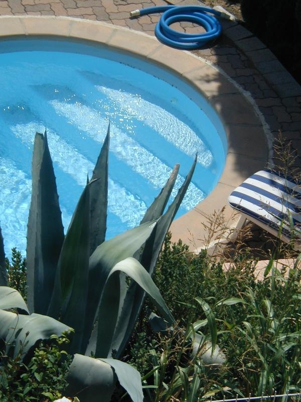 Pool - pool