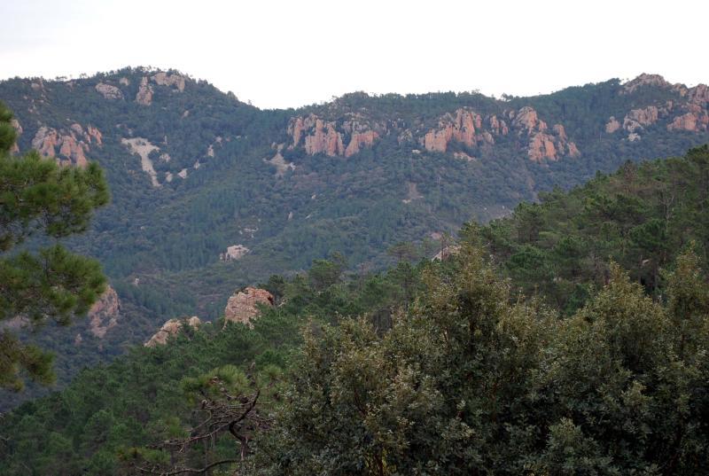 Esterel hills