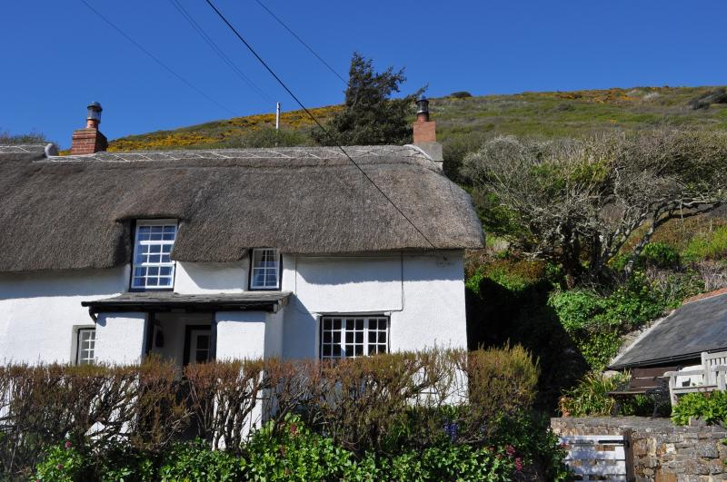 Beautiful Thatched Cottage by the sea