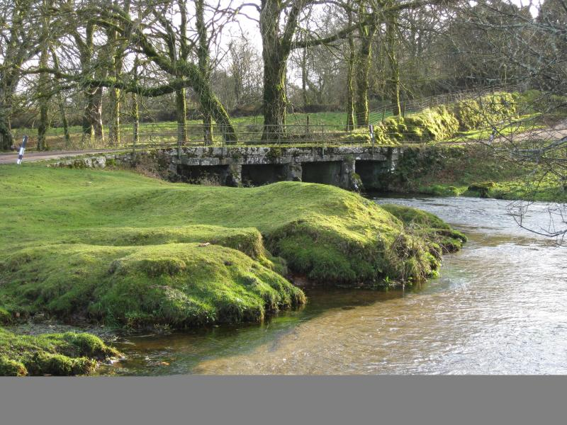 Moorland river with 'swimming pools' and 'clapper' bridge