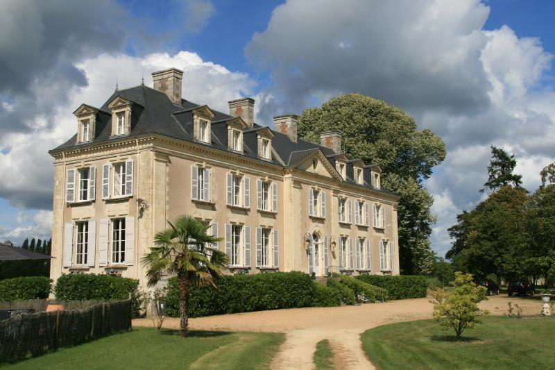 Gite Chateau La Mothaye -Loire, holiday rental in Jarze