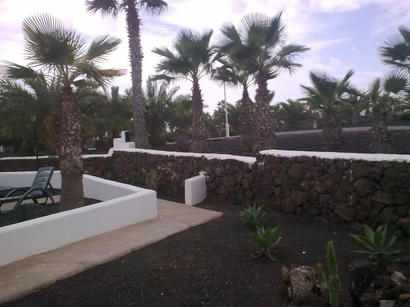 from the bungalow1 garden to the palm-groove and to swimming pool