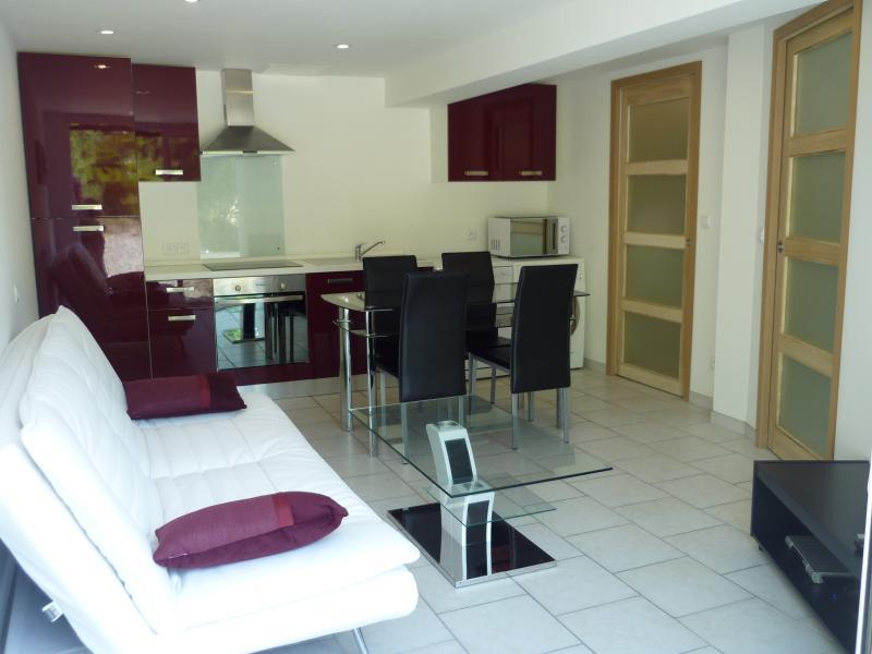 Domaine de Couchet Apartment, holiday rental in Villelongue-d'Aude