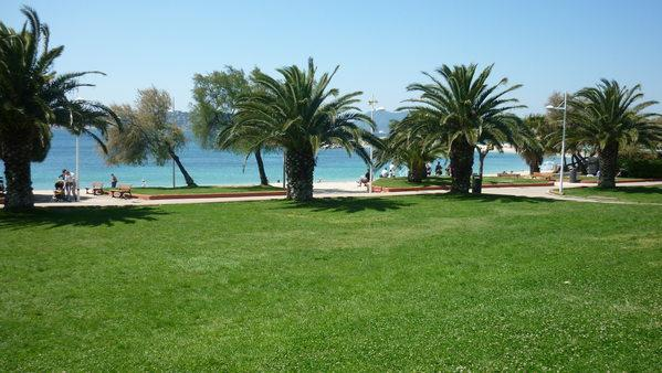 pelouse en bordure de plage