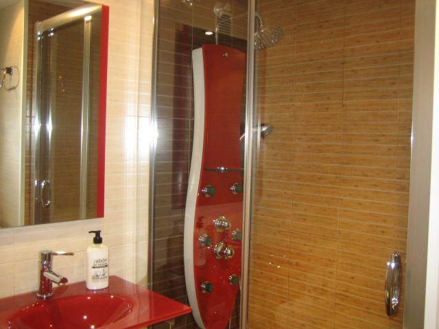 Baño con ducha hidromasaje.