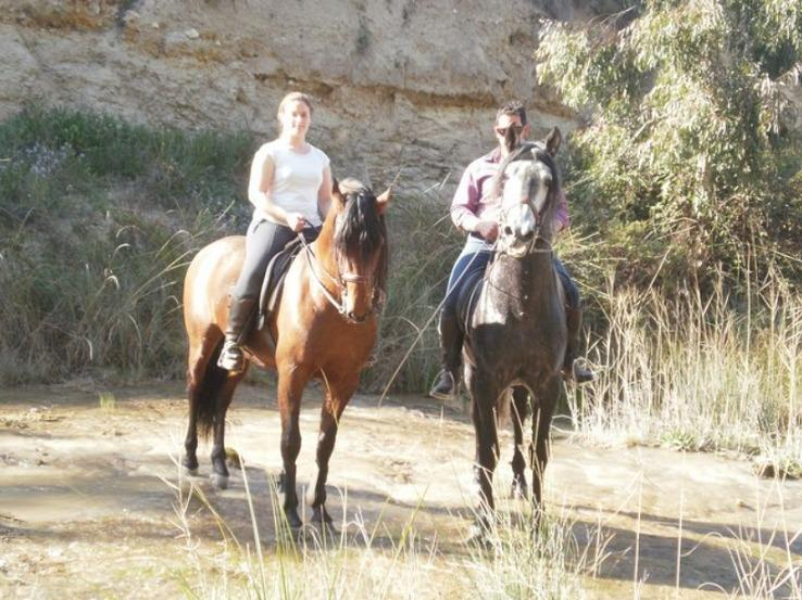 Horse-riding in the club 'Bucare',  +/- 7 km from the Cortijo El Quieresito. Free shuttle-