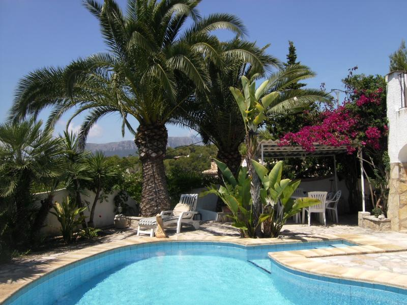 Private Pool surround and dining/barbeque arbour ideal for outdoor living