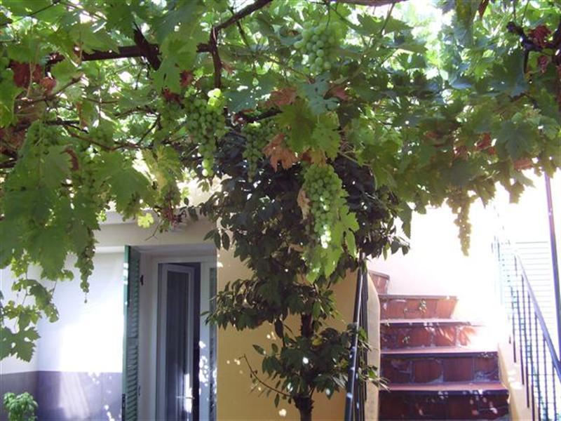 Entrada al apartamento dúplex - 14 Impasse des Poilus - Cannes