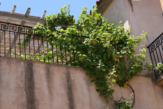 Renevatated Stone House, holiday rental in Molaoi