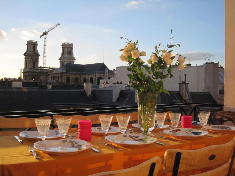 StGermain Penthouse Terrace AC, holiday rental in Paris