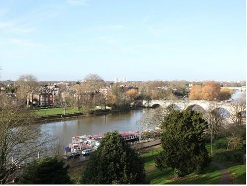 Unique river view flat, central Richmond.  Great location, scenic, plenty to do, vacation rental in London