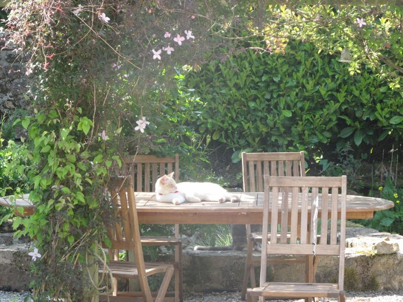 Claude relaxing at the other end of the garden