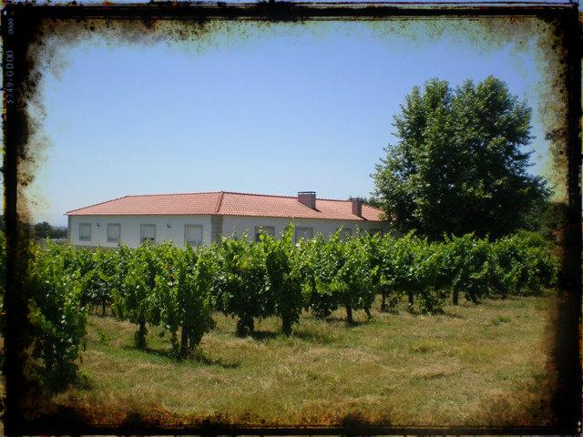 Casa do Linhar - Quintas de Sirlyn - Wine producer, location de vacances à Nelas