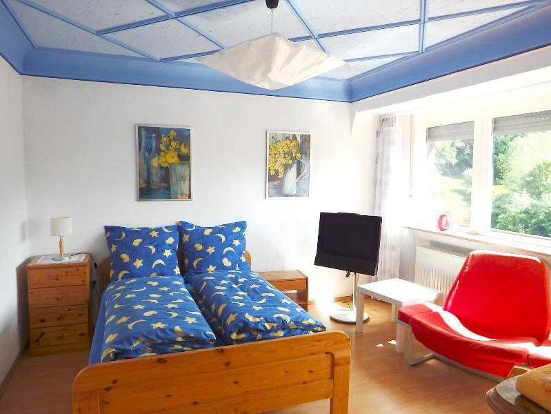 Helle, stadtnahe Wohnung in der Natur, geräumiges Schlafzimmer mit Balkon und Blick ins Grüne