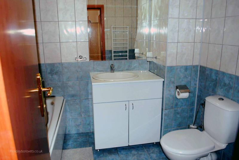 Bathroom is a tiled wet room with shower and bath