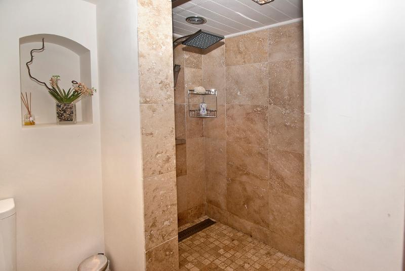 separate shower room with automatic lighting and extraction and towel warmers