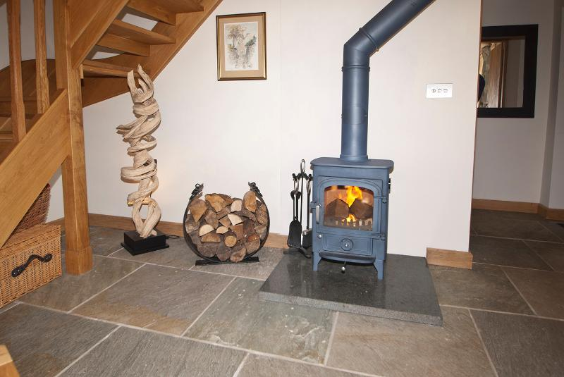 cosy wood burning stove