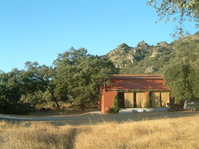 The Barn in Summer with our green mountain in the background