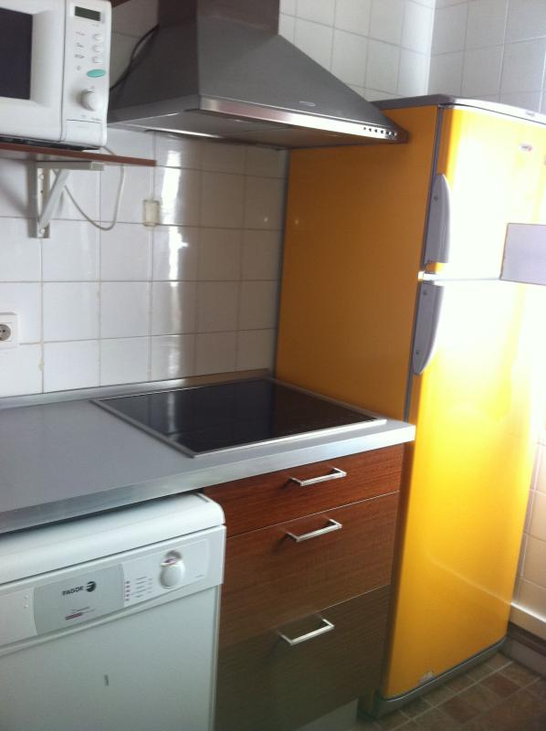 Kitchen: Fridge, freezer, heat induction hob