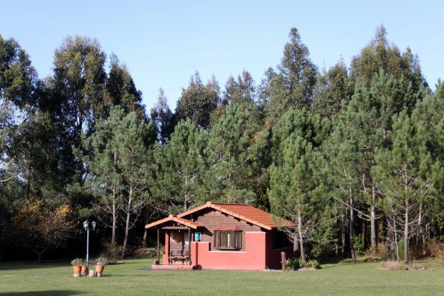 Vivienda Vacacional La Ardilla, holiday rental in Valdredo