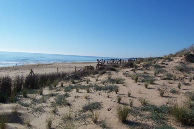 The sand dunes and unspoiled beach area