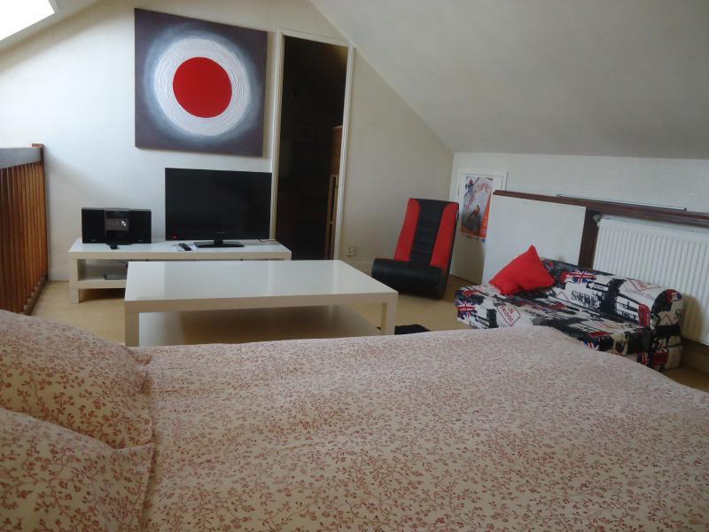 Linda mezzanine con sofa cama y pequeña cama extra, TV, música