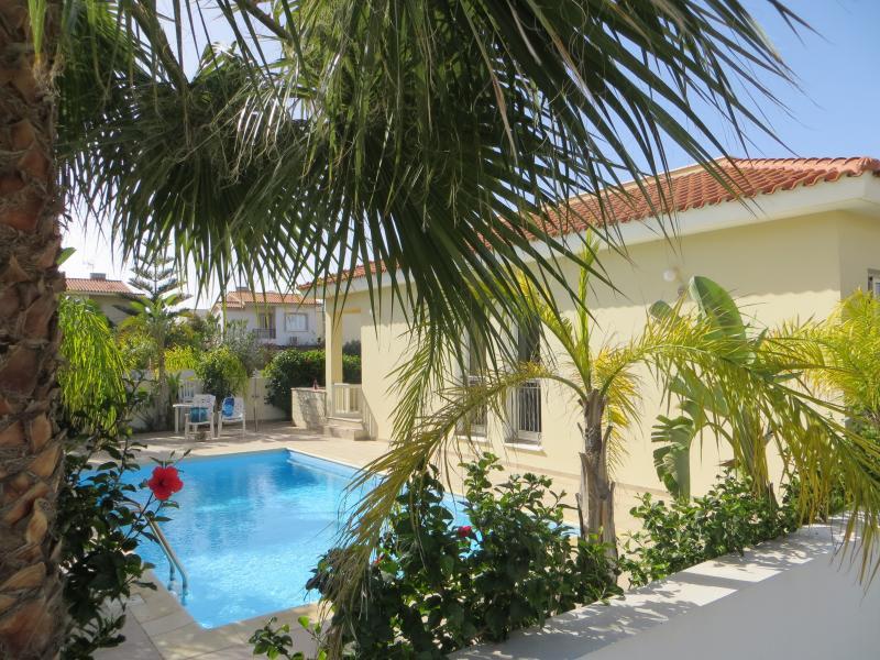 Profitez de la magnifique piscine privée entourée de palmiers