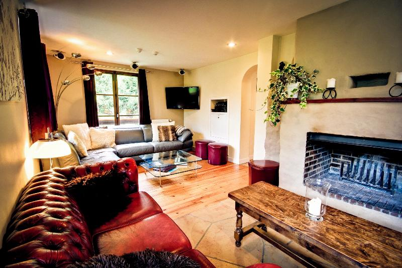 Living room with log fire and media centre