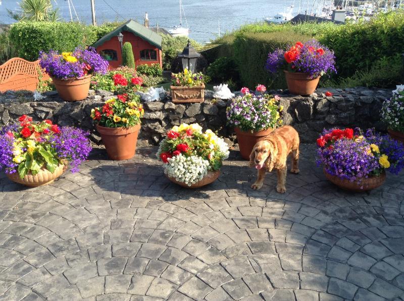 Garden and Sally