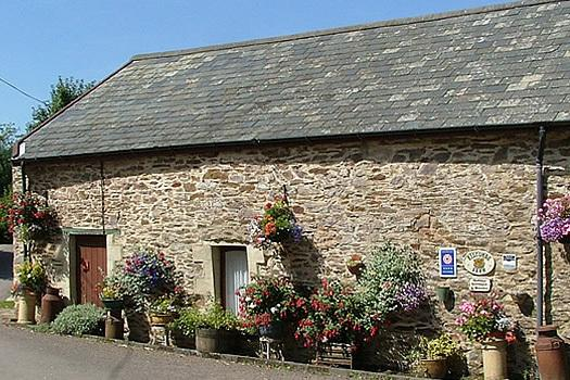 Bracken Cottage - Decorated with flowers