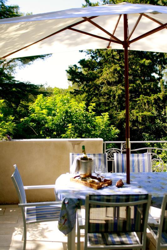 Main terrace (off kitchen)