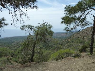The Akamas nature reserve West of Paphos