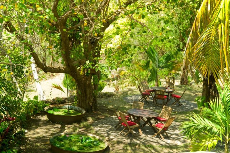 A view overlooking the outside sitting area surrounded by lush gardens and indigenous vegetation