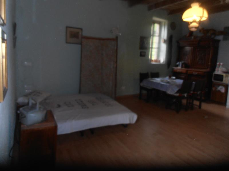 FRENCH BOUDOIR SLEEPING IN THE MONOLOCALE SHADED FROM THE WINDOW SO ONLY THE WILD ANIMALS AWAKE YOU