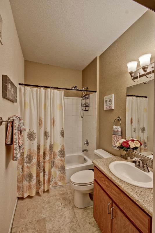 Hallway bathroom and comes with a blow dryer