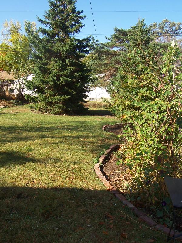 Ample Fenced-in Rear Yard that is Pet Friendly!