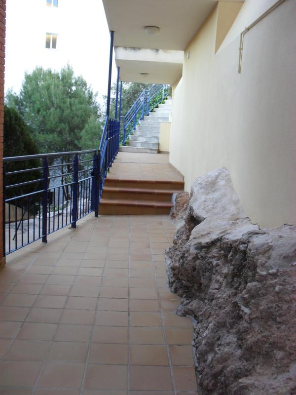 Path to the pool