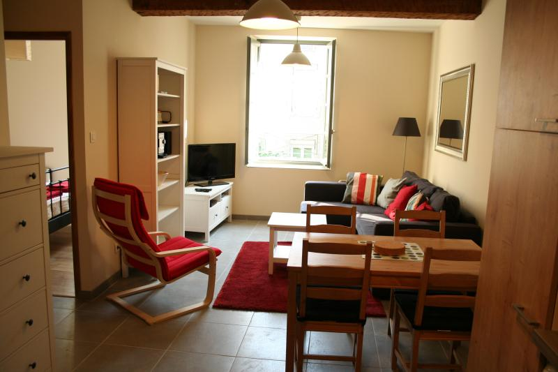APARTMENT MORTIER, CARCASSONNE, holiday rental in Carcassonne Center
