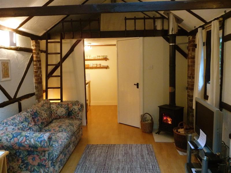 Wohnzimmer mit gemütlichen Holz-Brenner