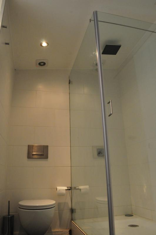 2nd Bathroom view of rainfall shower