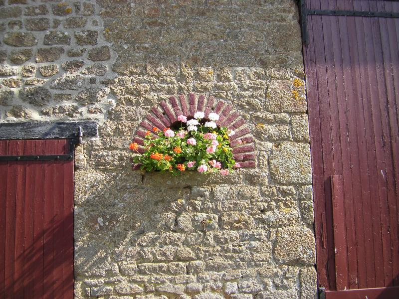 Flowers on the barn