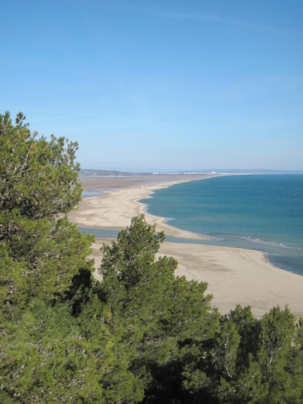 Unspoilt beach at La Franqui