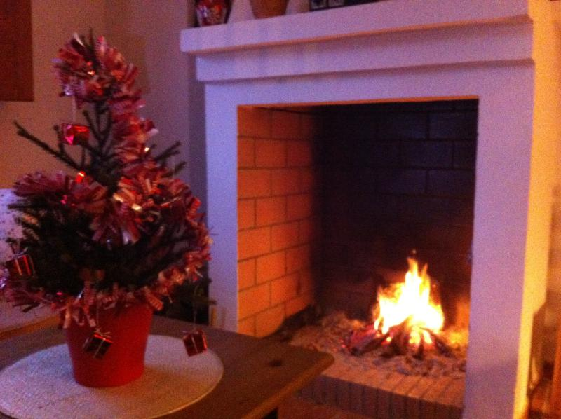 A large open fireplace warmer will the long winter nights