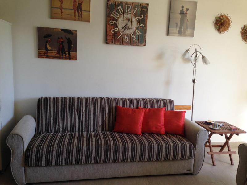 Divano può essere utilizzato come un divano letto.