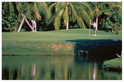 7 Nearby Golf Courses